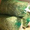 モンラパンオリジナル 北海道産1番刈り 1kg